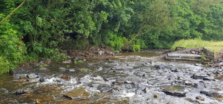 Bluebell Wood Weir, after removal, River Calder