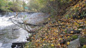 Lower Darwen Weir