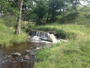 Cow Hey weir before removal