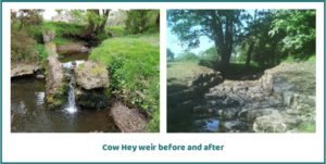 Cow Hey weir before and after