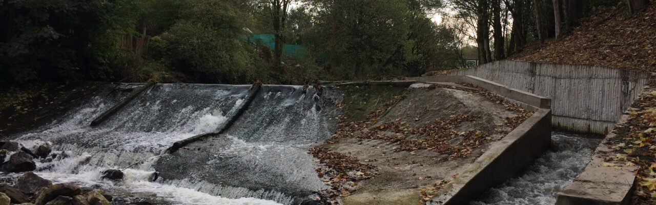 Fish Pass Fact File: Lower Darwen