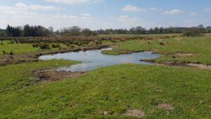 Wardsleys Farm