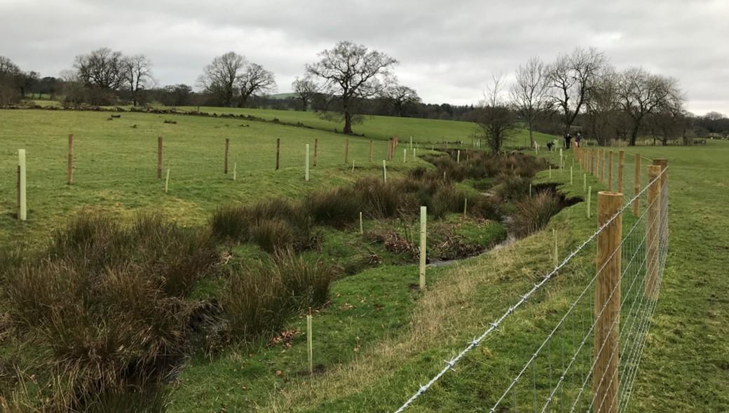 Carter Fold Farm