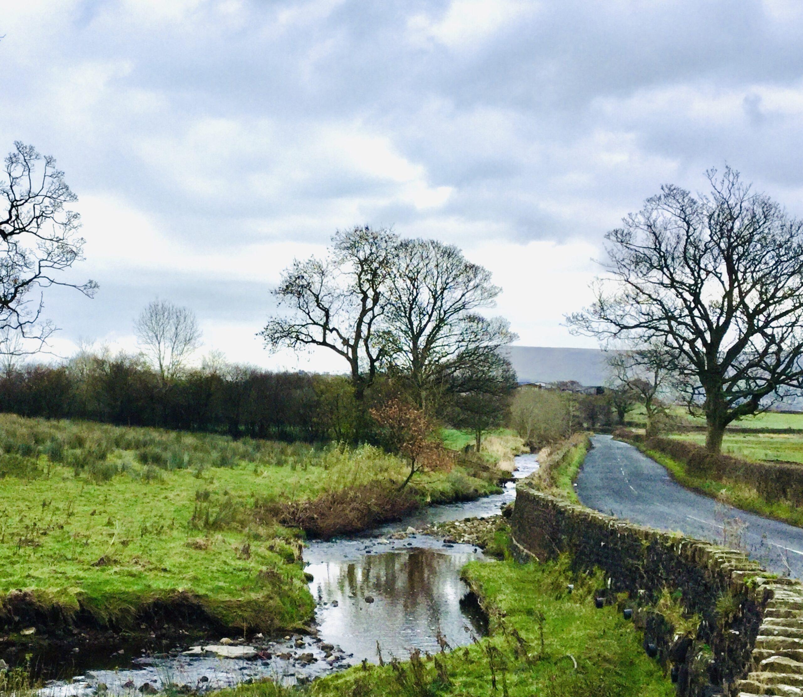 Bashall Brook