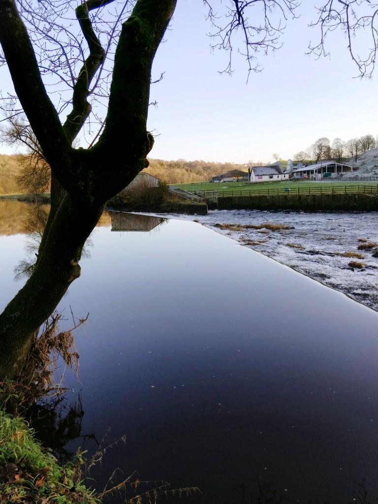 Calm River Calder, Whalley