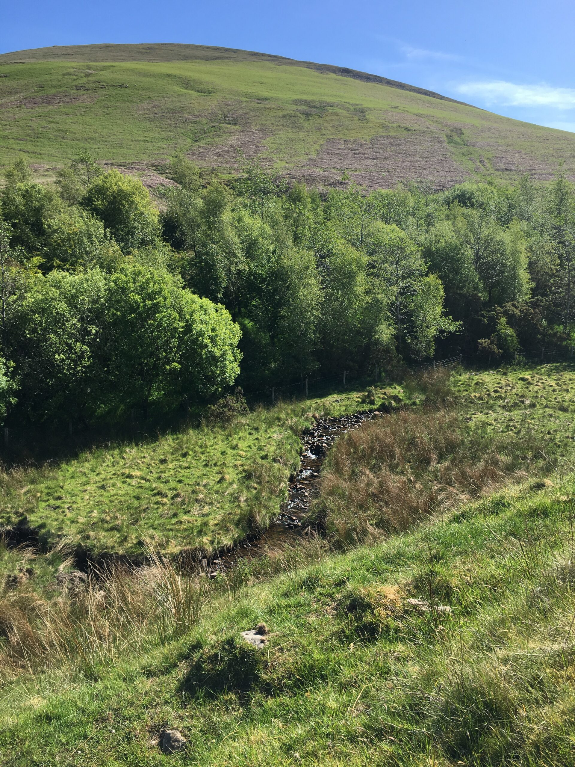 Stream near Nick of Pendle