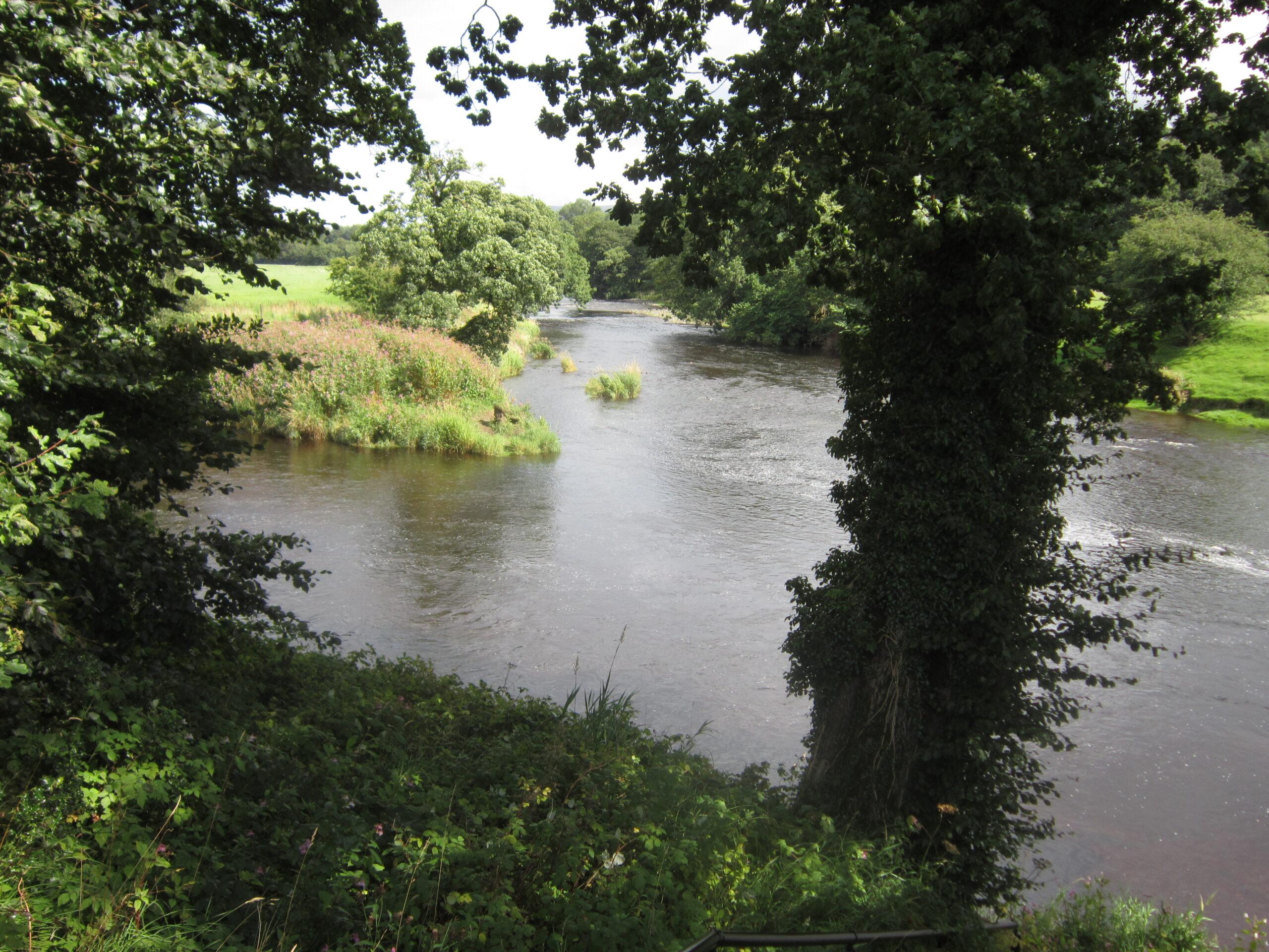 Hodder-Ribble confluence