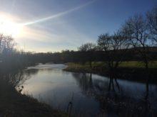 River Ribble at Sawley