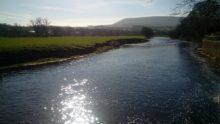 Morning sun on the Ribble near Sawley