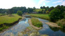 Ribble from Sawley Bridge